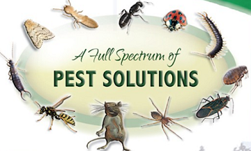 Image result for pest control